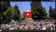brandon-fibbs-personal-journey_video